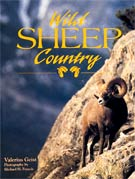 Wild Sheep Country