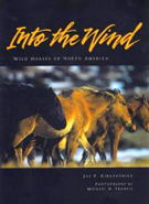 Into the Wind  		Wild Horses Of North America
