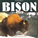 Bison for Kids